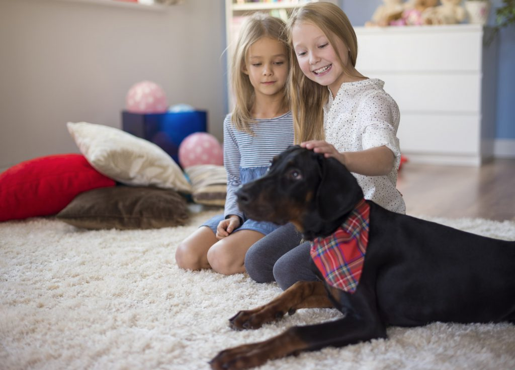 Two Girls Petting Dog On Clean Carpet